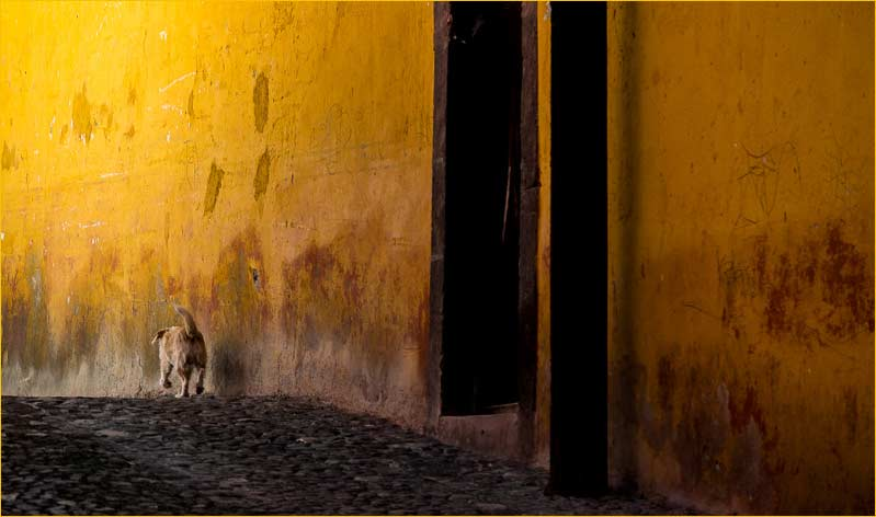 Long Way Home San Miguel de Allende, Mexico. August, 2013 by Michael Reichmann
